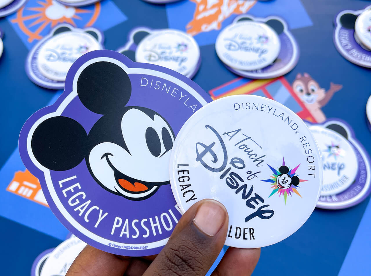 Complimentary Legacy Passholder botton and magnet for A Touch of Disney